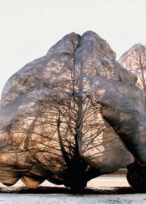 sabina roth – christo and jeanne-claude – wrapped trees – christo – artist – fondation beyeler – ernst beyeler – berower park – riehen – basel – photos – art book – fotos – kunstkatalog – art paintings – by peter gartmann – art + photography – kunst + fotografie – schweiz, switzerland – represented by marco stücklin – www.marco-stuecklin.ch – susanne minder art picture collection – susanne minder photo collection – bildarchiv – daniel blaise thorens fine art gallery – daniel thorens